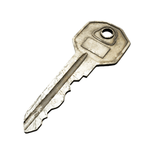simple_key_key_item_remnant_from_the_ashes_wiki_guide_220px